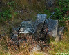 A stone seat made at the Darling Seat location.  It is actually pretty comfy