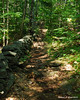The trail follows an old stone wall for a ways