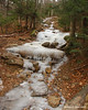 Some parts of the trail had lots of ice from the water leaking out of the saturated ground