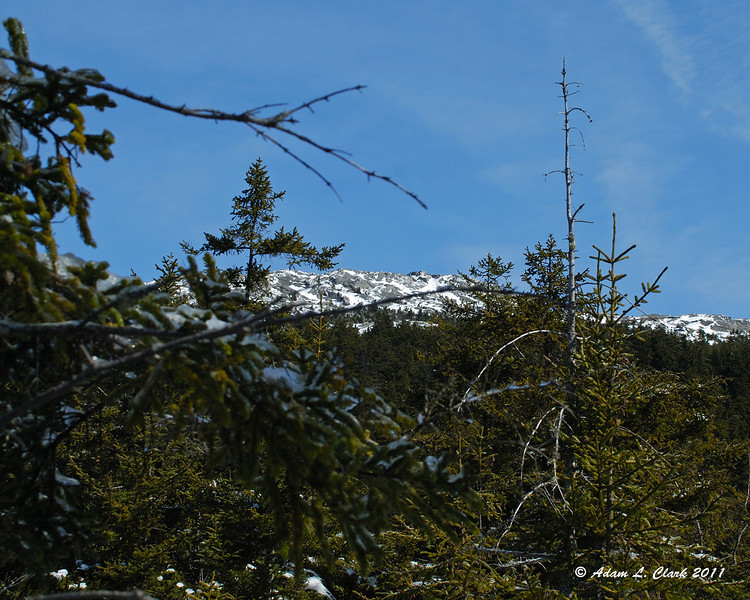 My first glimpse of the summit from the Marian Trail