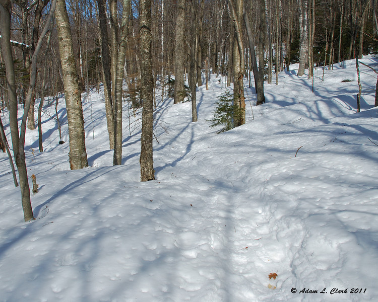 The trail slowly gaining elevation while following the side of the mountain