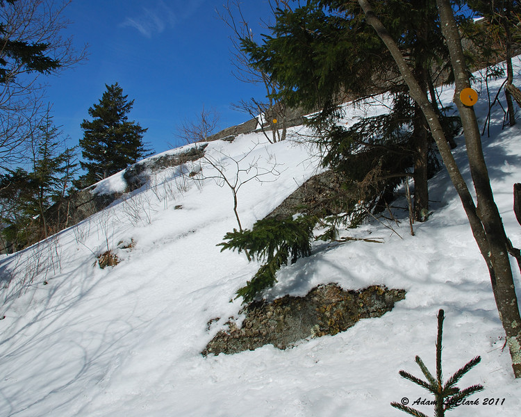 A few steep uphills were a little tricky with the snowshoes on