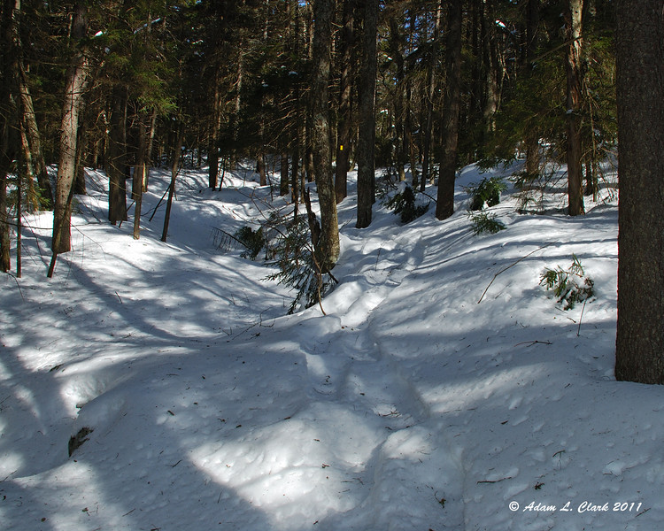 Following the trail up next to the snow covered brook