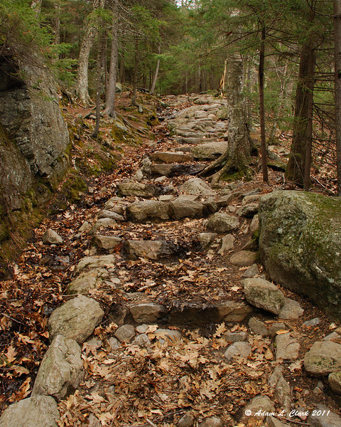 Some more steps built into the trail where a brook sometimes runs down the trail