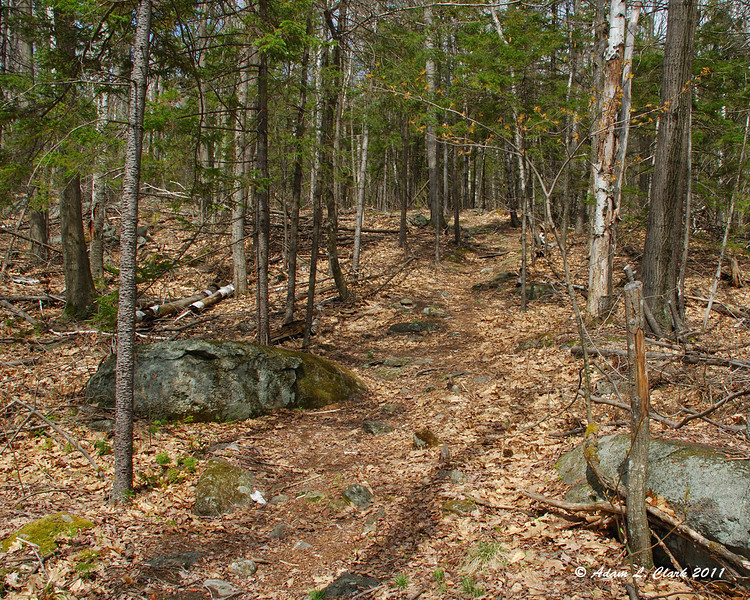 The Harling Trail starting to go uphill more steeply