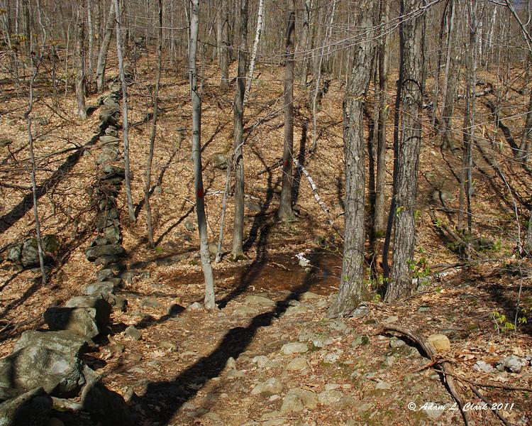 A dip in the Birchtoft Trail