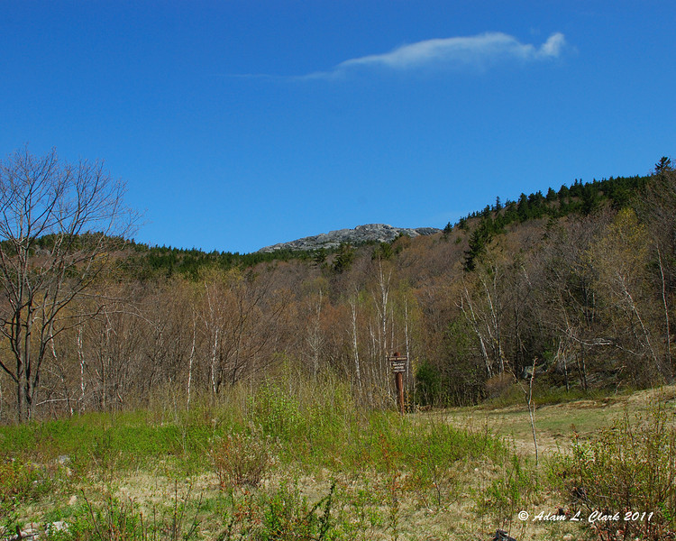 A view up to the summit from the Halfway House Site