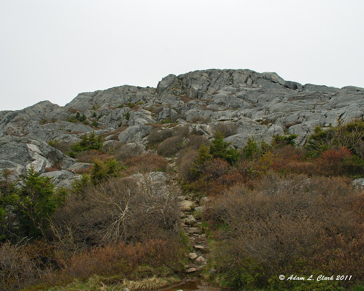 A view up to the summit along the top of the White Arrow Trail