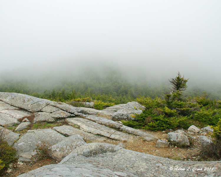 Looking towards the clouded in summit from Bald Rock