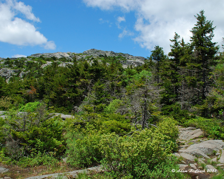 Looking back up to the summit from the White Cross Trail