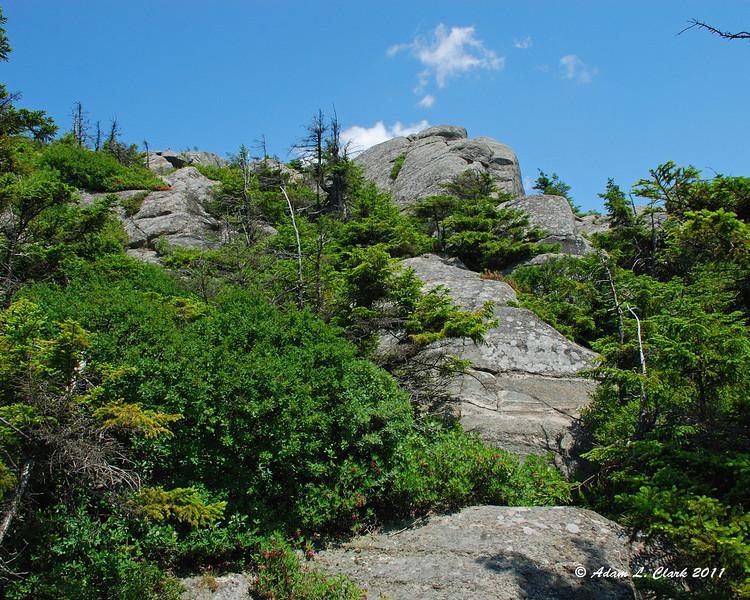 Climbing up some rocks