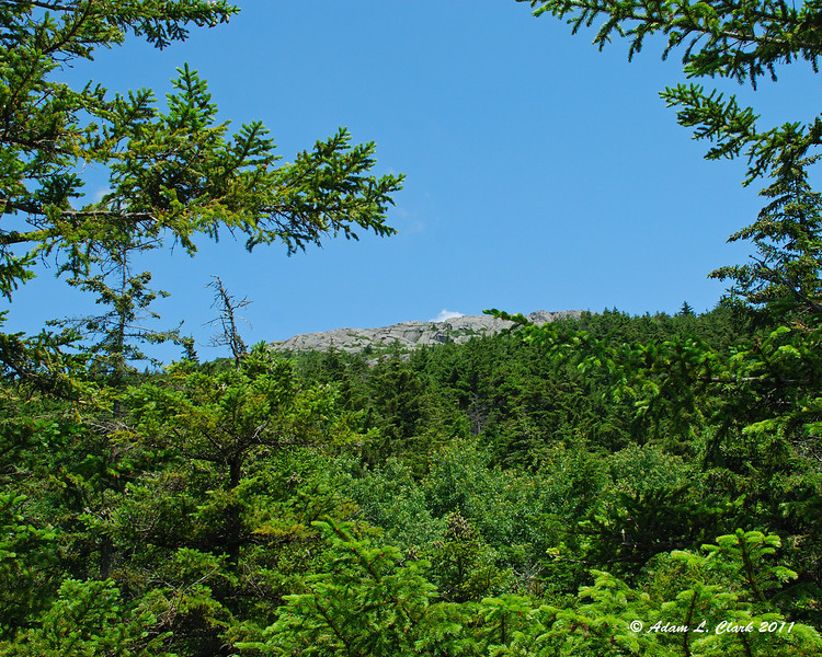 A small glimpse up towards the summit