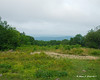 A cloudy view at the old Halfway House Site