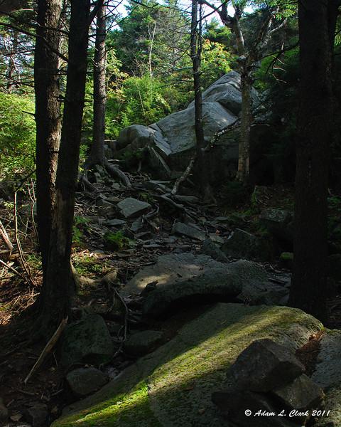Climbing up some large rocks near treeline