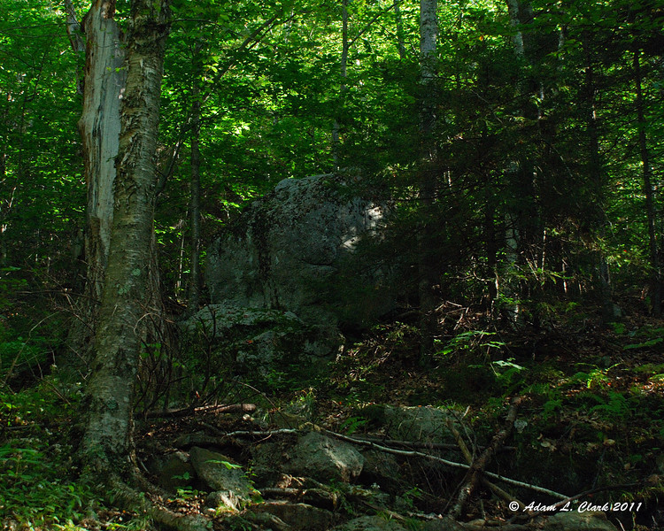 A large rock next to the trail