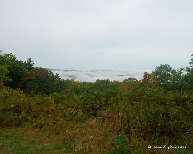 View from the Old Halfway House Site