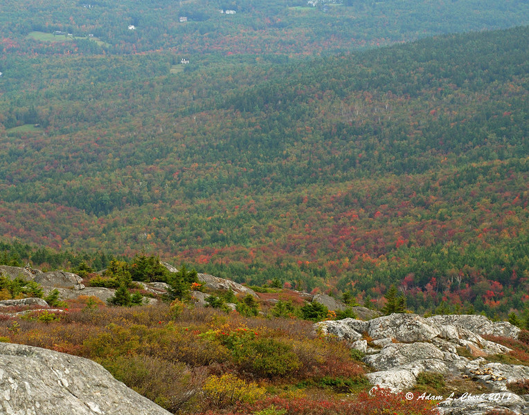 A few spots of fall foliage showing up on the Northern slopes of the mountain