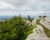Looking West over Bald Rock