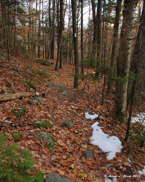 Heading down the Lost Farm Trail over a layer of slick leaves