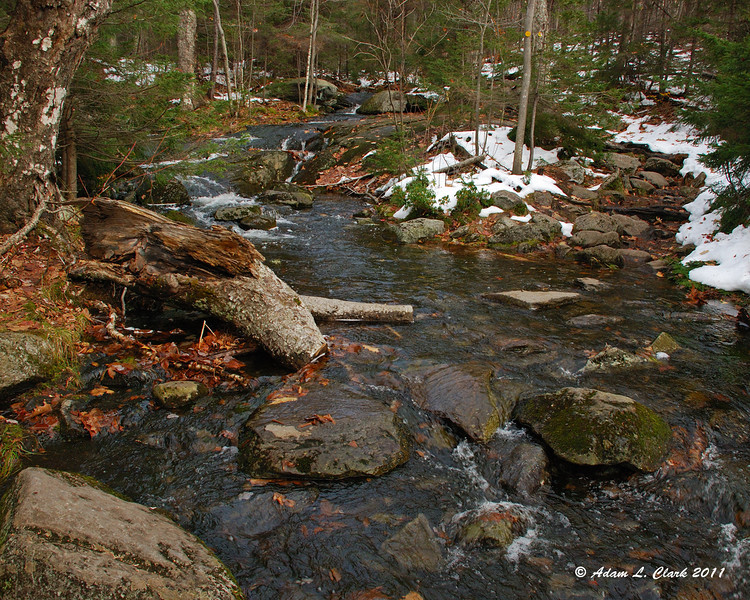 Crossing a brook the runs near the trail