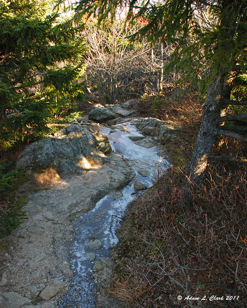 Some ice in the trail near treeline