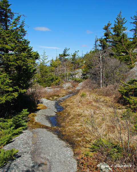 The trail heads over the bare rock between the wet grassy patches