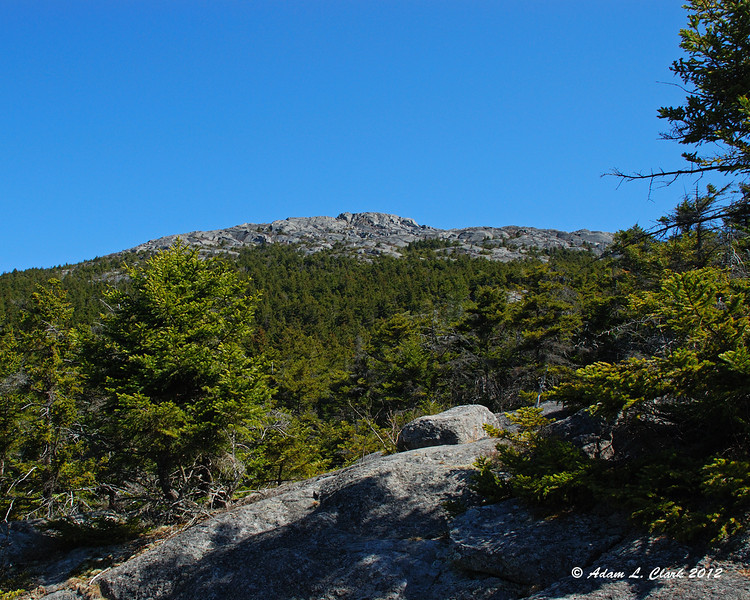 Looking up to the summit along the Great Pasture Trail
