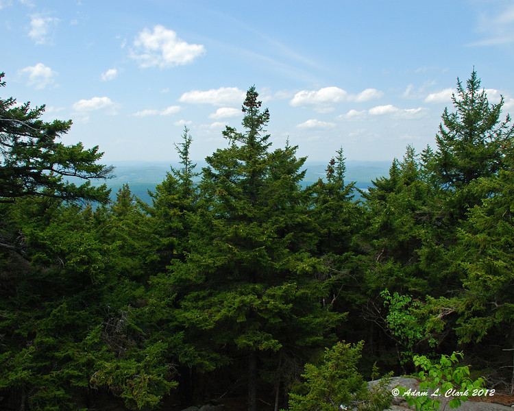 A little bit of a view over the tops of the trees to the northwest