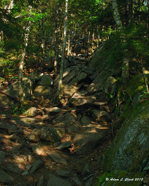 The rockiest and one of the steepest sections of the trail