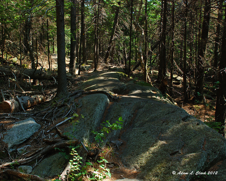 Once past the Red Spot Trail, the Cascade Link is less used and goes over some smooth rocks
