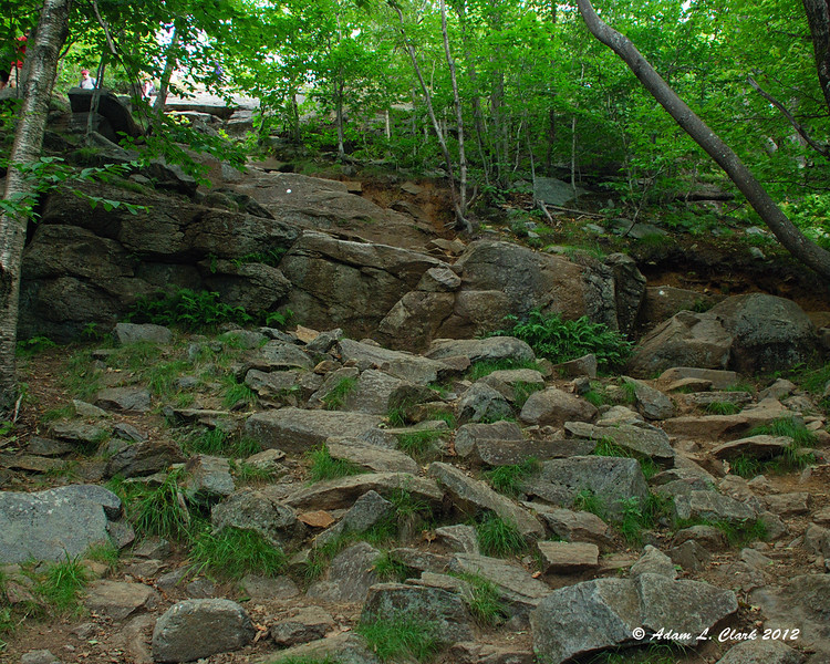 The White Dot Trail is heavily used and worn down.  It can be quite rocky in some places