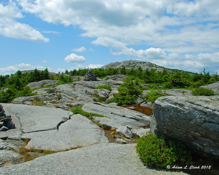 Nearing the summit, the trail is mostly over open rock with only some trees along it