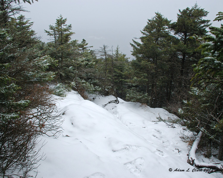 Looking back down the trail as I near treeline after it has started to snow again
