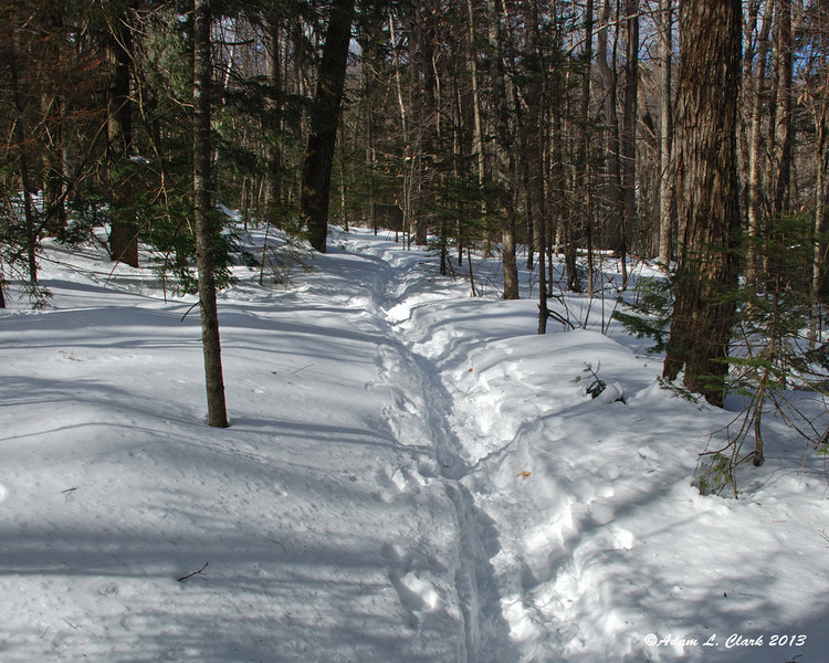 After only a few hundred feet, I decided the trail was too soft and putting on the snowshoes made the most sense