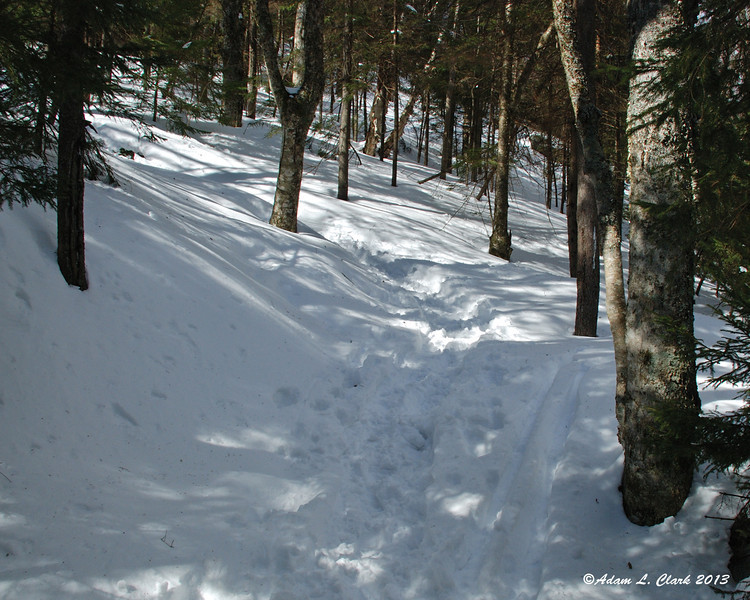 After around a mile of pretty easy trail, you finally come to the turn that heads you uphill and on to the mountain
