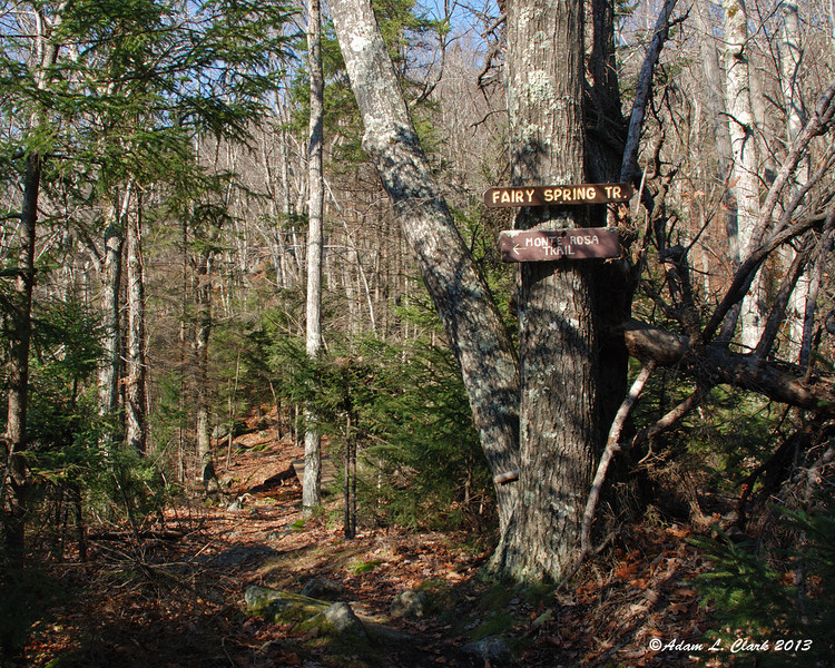 Follow the Monte Rosa Trail briefly to get to the new start of the Fairy Spring Trail