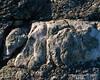 A vein of quartz in the rocks around the summit