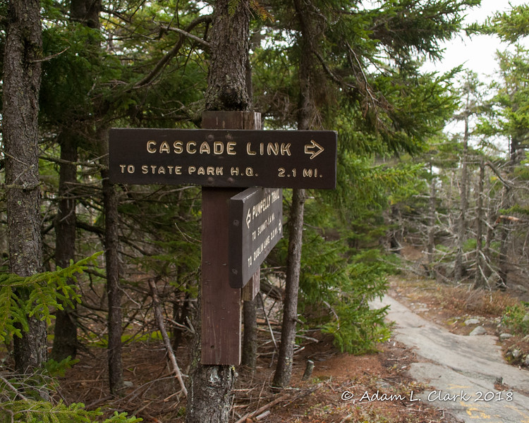 After about 3 miles of hiking, I hit the junction with the Cascade Link