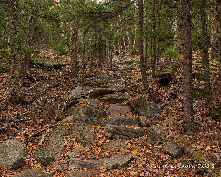 A good look at just some of the nice stone stairs that have been added on the trail