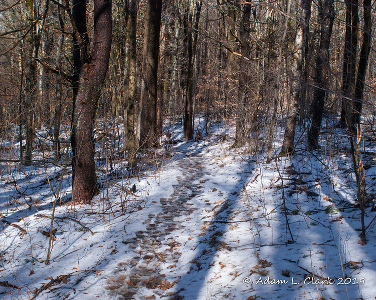 A thin layer of snow on the trail down low.  It was also a bit slushy