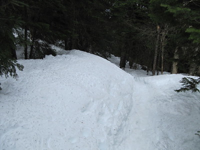 We followed the snowshoe path that led us in the wrong direction.