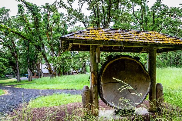 Mt. Pisgah Arboretum