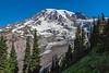 Day 2-Mt Rainier near Glacier Vista 9741