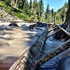 SML down log crossing over Carbon River - Mt. Rainier backpack - 15