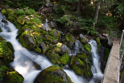 A log bridge along the trail, near Spray Falls