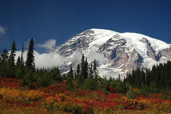 Mt Rainier - Fall Color<br /> Snow fell the next day, settling in for the long winter