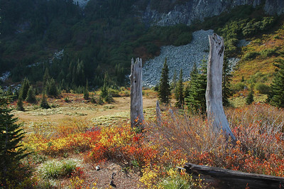 Snow Lake Trail, fall