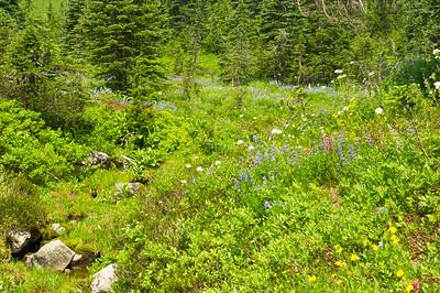 Highlakes trail