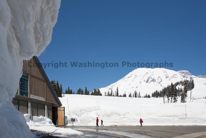 Mt Rainier Paradise Winter 100