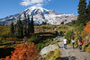 Mt Rainier Paradise Autumn 189